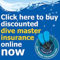 DM Insurance2