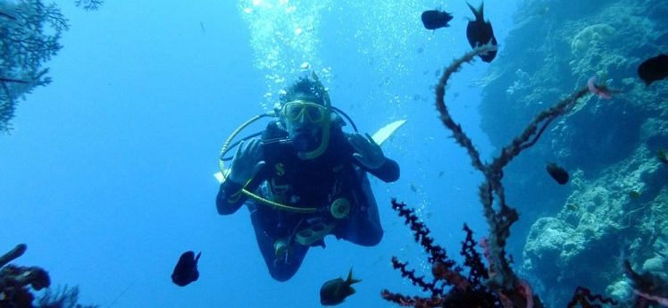 learn how to scuba dive - PADI Open Water Diver
