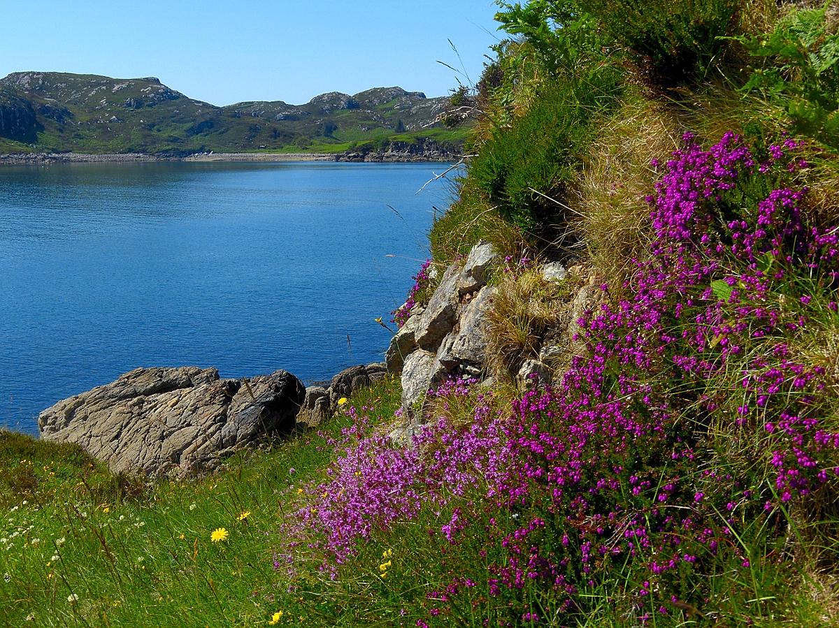 Scotland - View on land